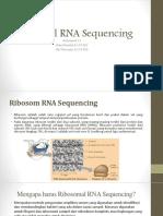 Kelompok 11_Ribosomal RNA Sequencing.pptx