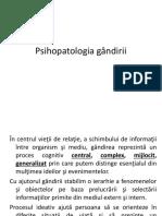 Psihopatologia gândirii