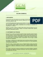 0108_boletin_salario_dominical.pdf