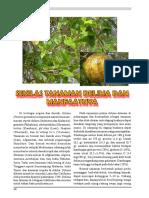 9_Sudjijo_Delima2014.pdf
