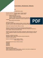 Apuntes de anatomía general