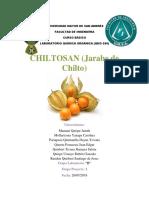 PROYECTO EN LIMPIO CHILTO.docx