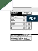 Formato API 10 Dpa
