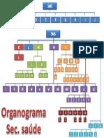 Organograma Novo