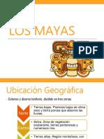 lo mayas