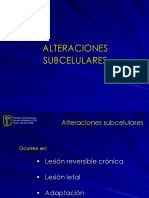 alteraciones subcelulares.ppt