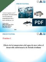 Práctica Desarrollo embrionario Peces.pdf