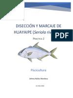 Disección y marcaje de peces
