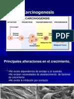 Carcinogenesis Medicina 2006