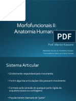 7 - Sistema Articular.pdf