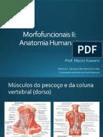 Sistema Muscular - músculos do pescoço e do dorso.pdf