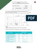 322942647-Prueba-Segundo-Los-Habitat.doc