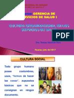Cultura Organizacional - Gerencia I-2017-I