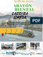 maratón ambiental.pdf