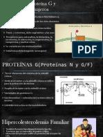Receptores Proteína G y Segundos Mensajeros