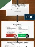 Traumatismo Craneoencefalico Fisiopatologia Mikel