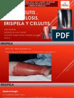 Osteomielitis , Salmonelosis, Erisipela y Celulitis