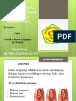 Presentation With Premature Rupture of Membrane