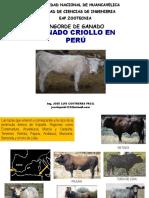 Catedra Nº 04 Ganado Criollo
