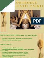 Controlul Calitatii Painii - Defectele Painii