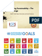 Lecture 1 - Chasing Sustainability.pdf