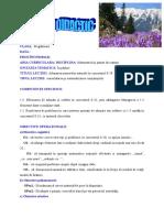 Proiect de Lectie Mem Inspectie c220172018