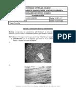 237233390-TEXTURA-Y-ESTRUCTURA-DE-ROCAS-SEDIMENTARIAS-docx.docx