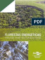 Florestas energéticas EMBRAPA