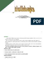 planificaresemestriala1.doc