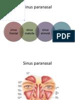 112295175 Ppt Sinusitis