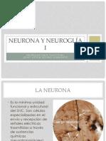 T3 Neurona y Neuroglía I
