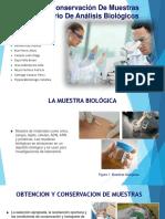 PRECAUCION Y CONSERVACIÓN DE MUESTRAS EN EL LABORATORIO DE ANÁLISIS BIOLÓGICOS, MUESTRA DE ORINA Y FUNCION RENAL