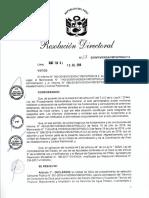Resolucion Nulidad Cp01_2018_vivienda Pucallap