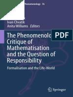 The Phenomenologic Critique of Mathematisation
