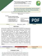 Propuesta demanejo de la microcuenca del Yanachaga Oxapampa