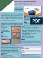 elaboracion.pdf