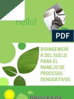 manejo de procesos denudativos bioingenieria