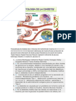 Fisiopatología de Diabetes Tipo 2 Glucosa