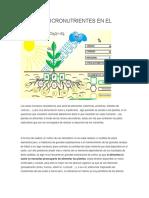 Macro y Micronutrientes en El Cultivo