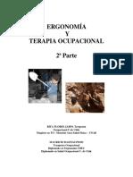 Ergonomía y Terapia Ocupacional - RFlores - MBastías - Segunda Parte