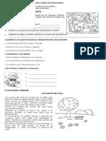 Acumulativ de Lengua Castellana