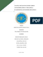 META PROBLEMAS.pdf