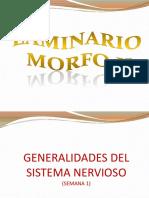 laminariodmorfoii-130613104602-phpapp02