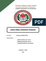 Trabajo de Auditoria de Gestion Ambiental. (1)