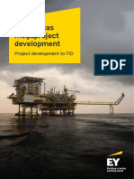 Ey Oil and Gas Megaproject Project Development to Fid