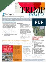 DIMP_Basics.pdf