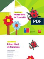 primer nivel detransicion 2017.pdf