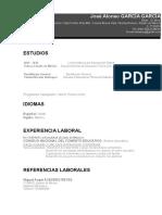 9 Curriculum Vitae Profesional Gris 97 2003
