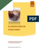 paneton.docx