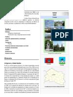 Oriol.pdf